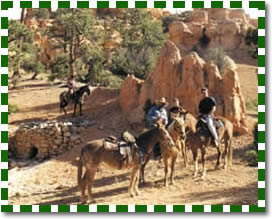 Zion horseback riding